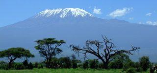 6 Days Kilimanjaro Safari Tour
